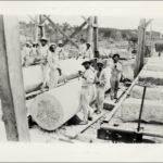 Convicts build Capitol